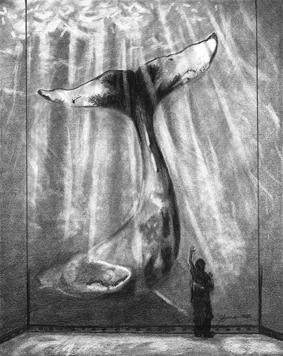 Humpback Whale Drawing - No Matter How Small by J Ferwerda