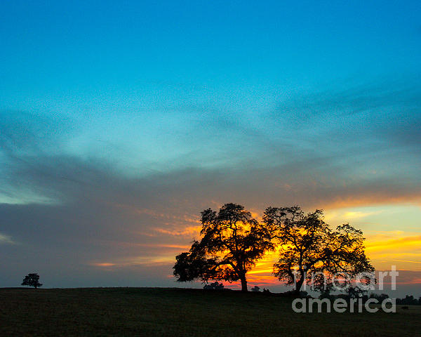 This Was Taken One Evening In The Sierra Foothills Not Far From My Home In Clovis Photograph - Oaks And Sunset 2 by Terry Garvin