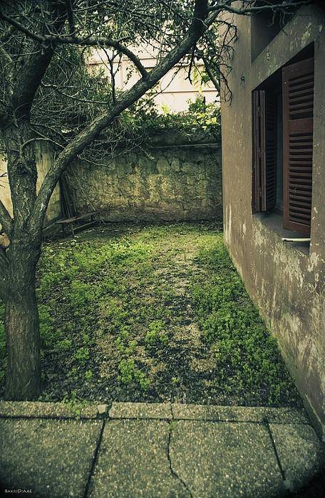 Window; Green Photograph - Old Place by Diaae Bakri