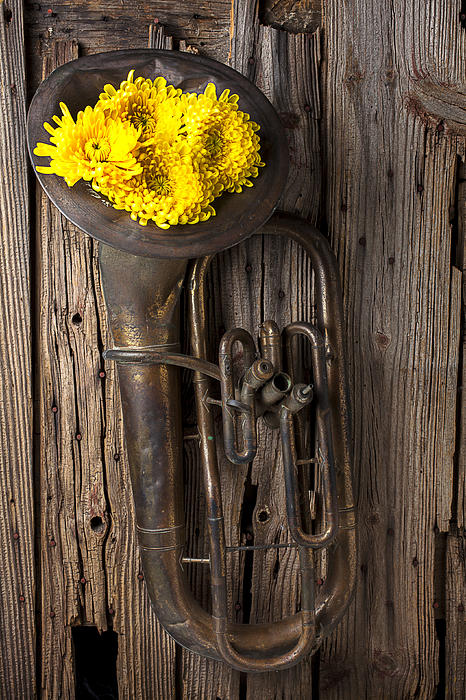 Old Tuba Photograph - Old Tuba And Yellow Mums by Garry Gay