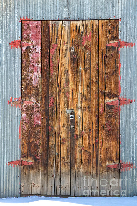 Door Photograph - Old Wood Door With Six Red Hinges by James BO  Insogna
