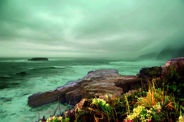 Pacific Photograph - Pacific Beauty by Dale Stillman