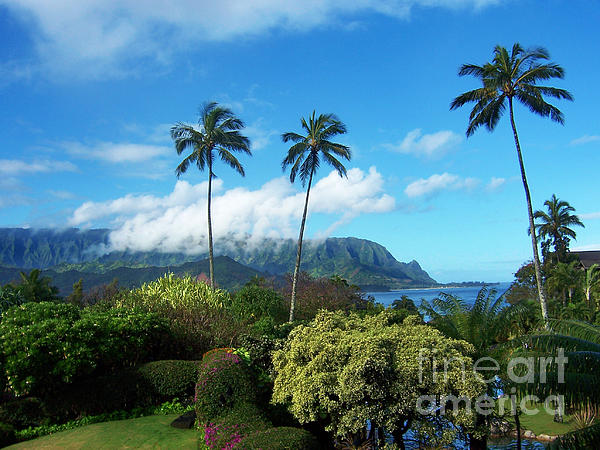 James Eddy - Palms at Hanalei