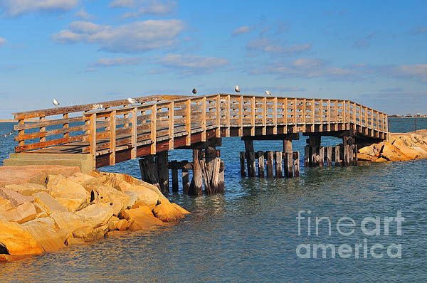 Plymouth Massachusetts Photograph - Plymouth Harbor Breakwater by Catherine Reusch  Daley