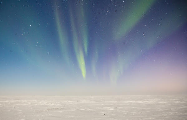 Sam Amato Photograph - Prudhoe Bay Aurora Borealis by Sam Amato