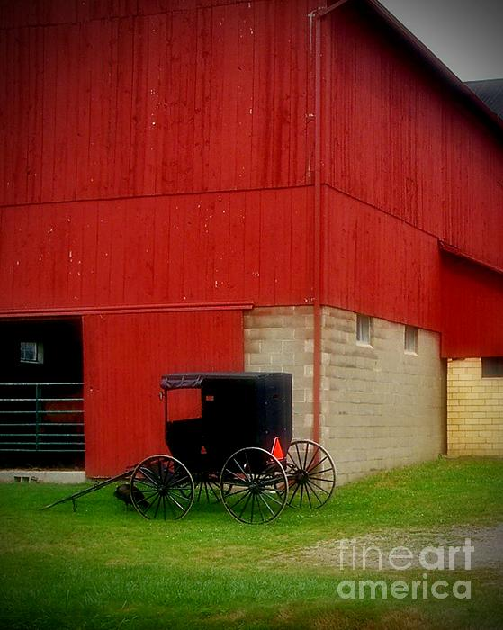 Amish Photograph - Readying The Buggy by Desiree Paquette