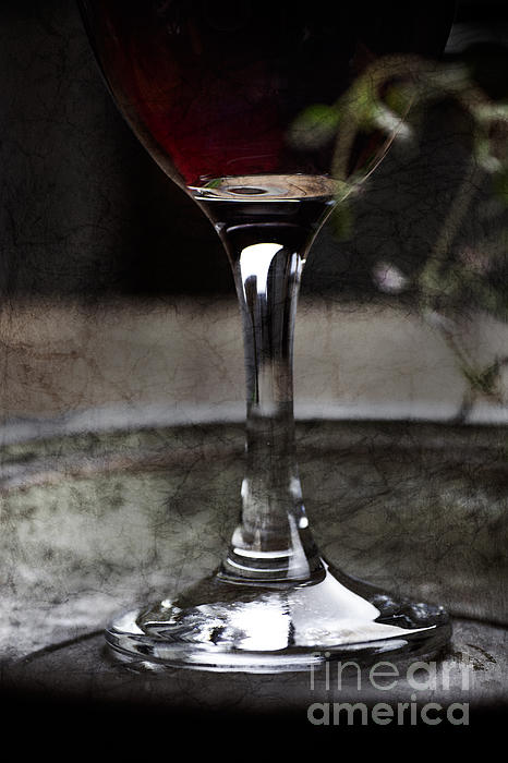 Vintage Photograph - Red Wine by Mythja  Photography