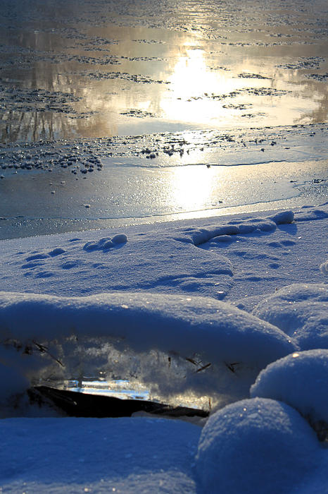 River Ice Photograph - River Ice by Hanne Lore Koehler