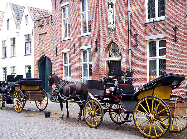 Horse Photograph - Romantic Taxi  by Kevin Askew