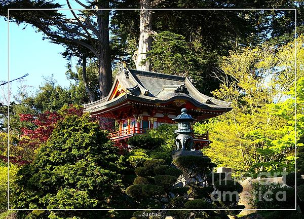 San Francisco Golden Gate Park Japanese Tea Garden 5 Photograph  - San Francisco Golden Gate Park Japanese Tea Garden 5 Fine Art Print