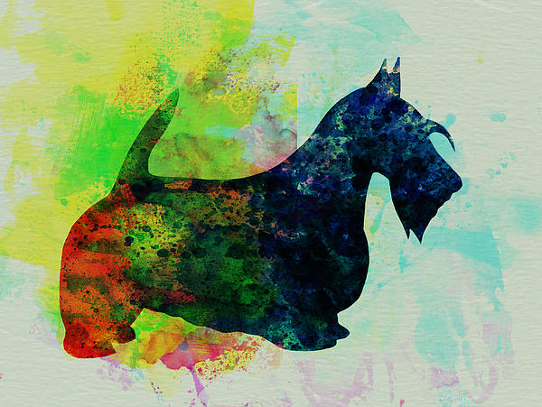 Scottish Terrier Painting - Scottish Terrier Watercolor by Naxart Studio