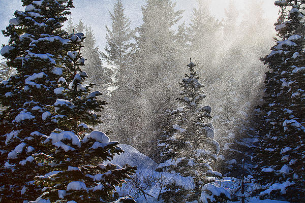 Snow Day Photograph Photograph - Snow Squalls by Jim Garrison