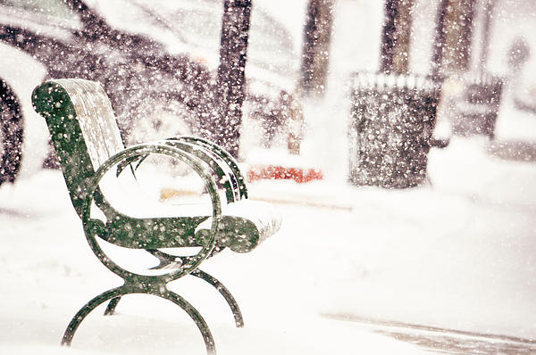 Bench Photograph - Snowy Seat by Emily Stauring