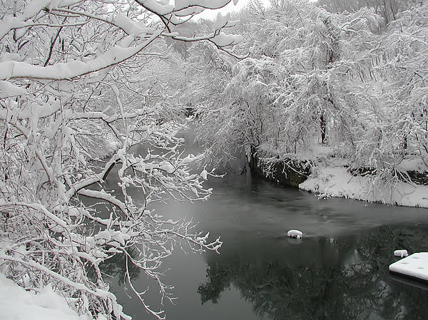Snowy Wissahickon Creek Photograph - Snowy Wissahickon Creek by Bill Cannon