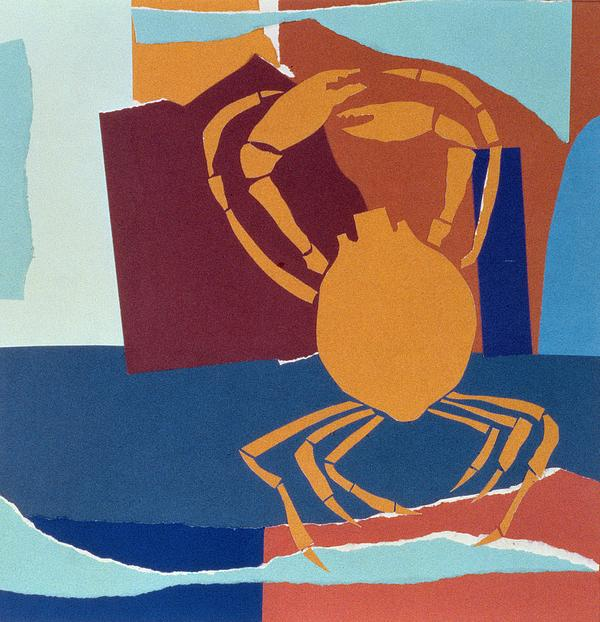 Seafood; Crustacean; Claw Painting - Spider Crab by John Wallington