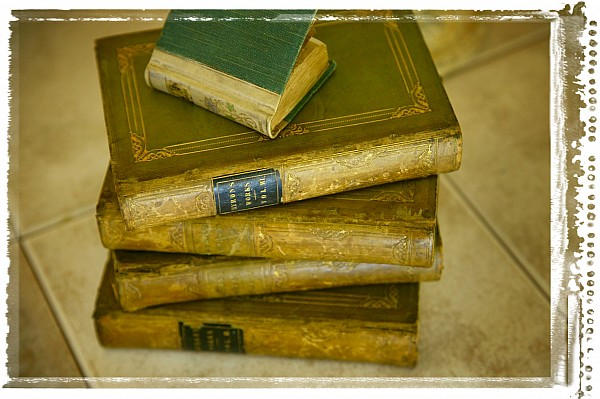 Aged Photograph - Stack Of Antique Books by Don Hammond