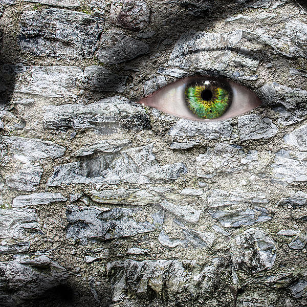 Eye Photograph - Stone Face by Semmick Photo