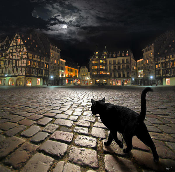 Strasbourgs Night Photograph  - Strasbourgs Night Fine Art Print