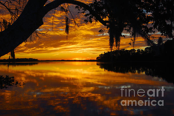 Water Photograph - Sunset At The Lake by Rick Mann