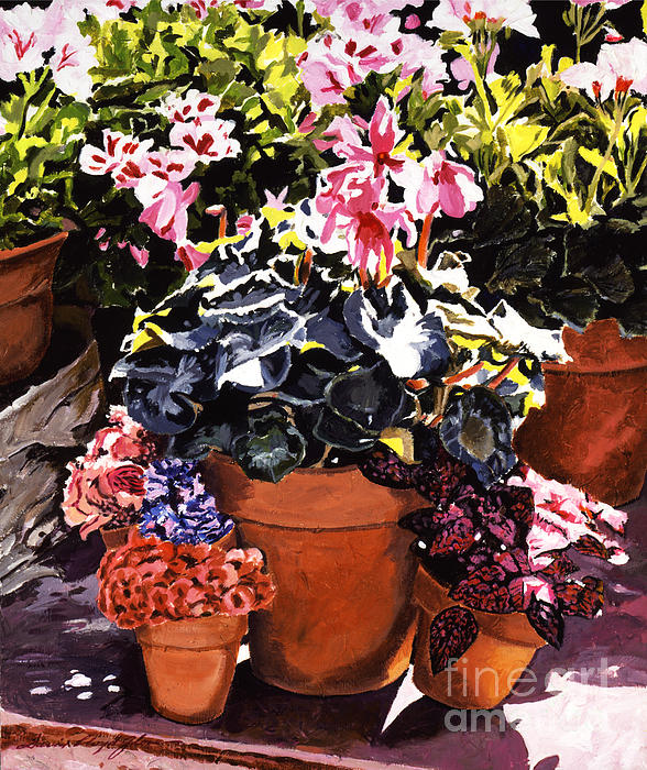 Gardenscapes Painting - Sunshine And Flowerpots by David Lloyd Glover