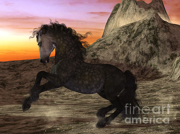 Elle Arden Walby - Sunset Stallion