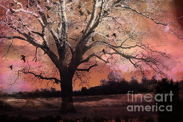 Surreal Pink Nature Photos Photograph - Surreal Gothic Fantasy Trees Pink Sky Ravens by Kathy Fornal