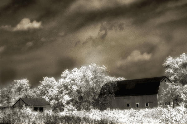 Surreal Barn Photos Photograph - Surreal Infrared Sepia Rural Barn Landscape by Kathy Fornal