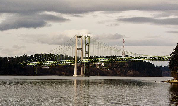 Ron Roberts - Tacoma Narrows Bridge II