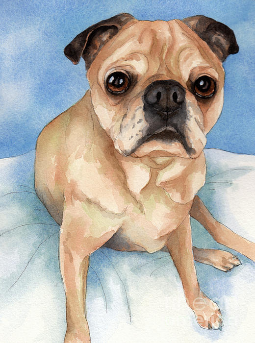 Pug Painting - Tan And Black Pug Dog by Cherilynn Wood