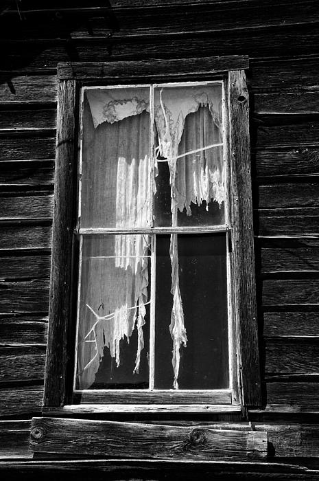 Tattered And Torn Photograph  - Tattered And Torn Fine Art Print