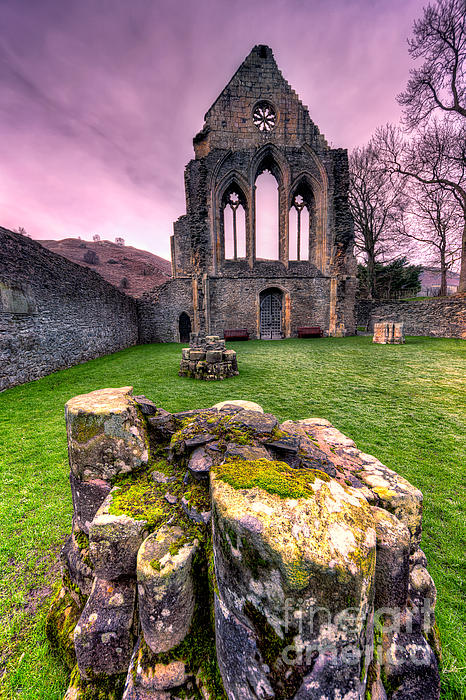 Valle Crucis Photograph - The Abbey  by Adrian Evans