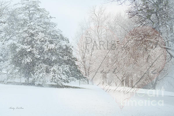 Snow Photograph - The Art Of Nature by Betty LaRue