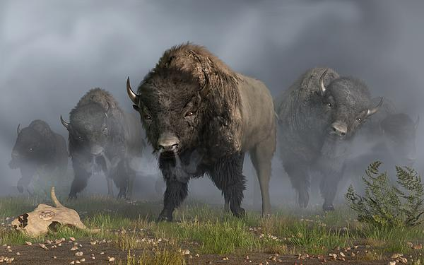 The Buffalo Vanguard Digital Art