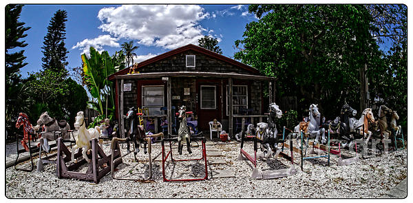 Florida Sanibel Tampa Southeast Doll Lady Vacation House Crackpot Insane Crazy Cat Garden Horses Photograph - The Doll Lady Of Matlacha by Edward Fielding