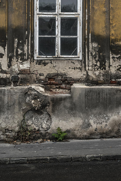 Pictures Of Budapest Hungary Photograph - The Face With No Teeth by Sabina Cosic