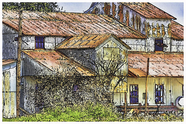 The Old Cotton Barn Painting  - The Old Cotton Barn Fine Art Print
