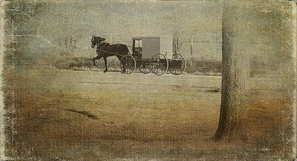 Amish Photograph - The Ride Home by Kathy Jennings