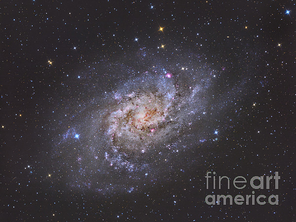 Space Photograph - The Triangulum Galaxy by Reinhold Wittich