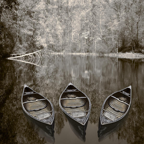 Three Old Canoes Photograph  - Three Old Canoes Fine Art Print