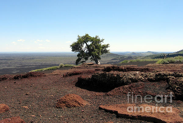 Craters Of The Moon National Monument Photograph - Top Of Inferno Cone by Patricia Januszkiewicz
