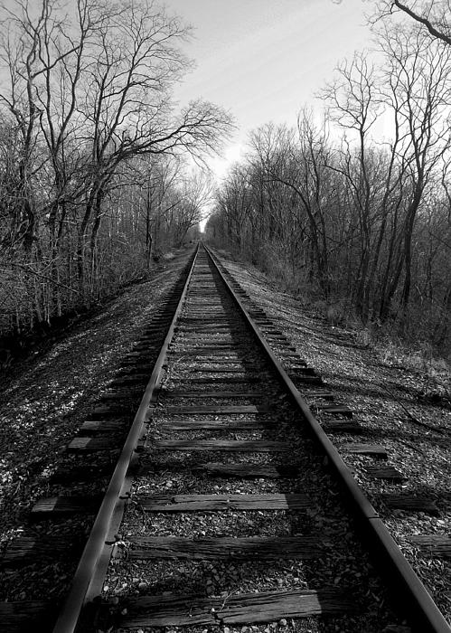 Railroad Photograph - Tracks by Brian Amick