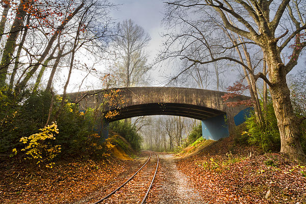 Appalachia Photograph - Under And Over  by Debra and Dave Vanderlaan