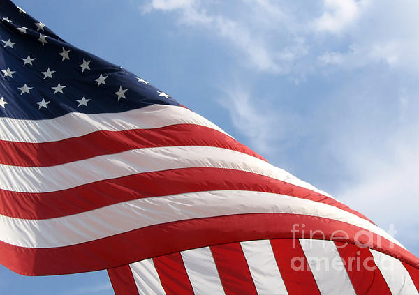 Ann Horn - United States Flag