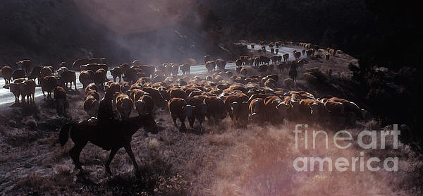 Cowboy Photograph - Up The Road by Jerry McElroy