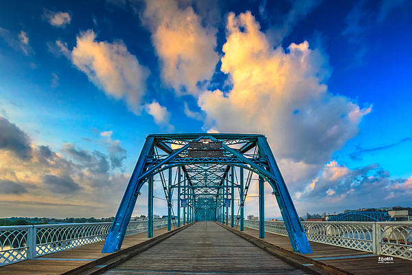 Walnut Street Walking Bridge Photograph  - Walnut Street Walking Bridge Fine Art Print