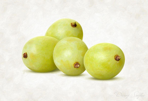 White Grapes Painting  - White Grapes Fine Art Print