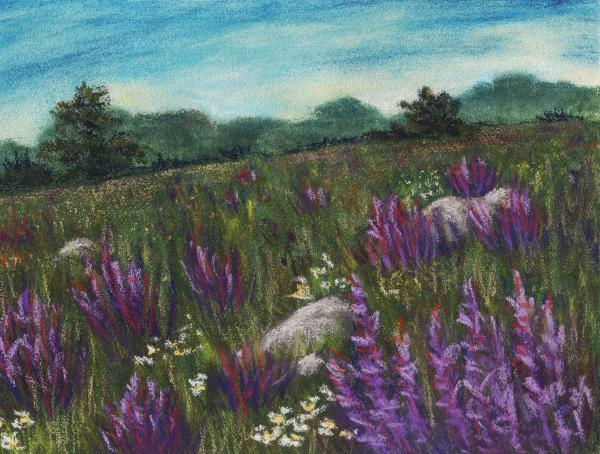 Wild Flower Field Painting  - Wild Flower Field Fine Art Print