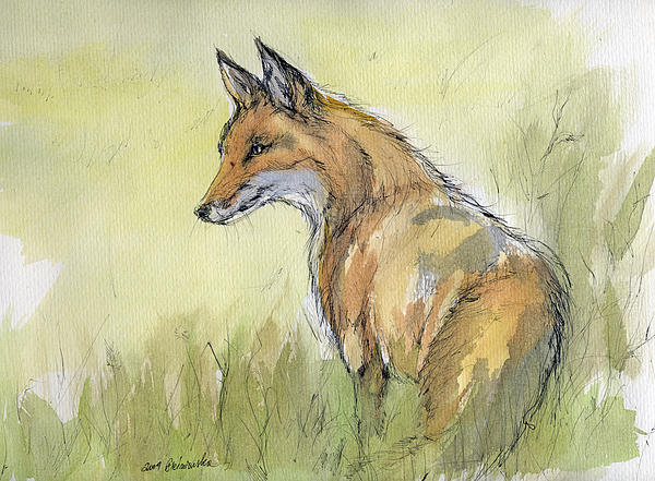 Fox Painting - Wild Fox Watercolor Painting by Angel  Tarantella