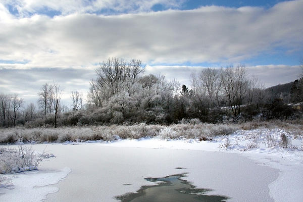 Winter At Boland Pond Photograph  - Winter At Boland Pond Fine Art Print