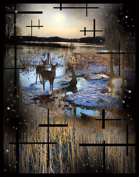 Collage Photograph - Winter Swamp Evening by Andrew Sliwinski